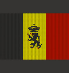 government ensign of belgium on knitted texture vector image