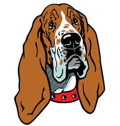 Head of basset hound vector
