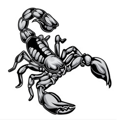 scorpions drawing logo 01 vector image