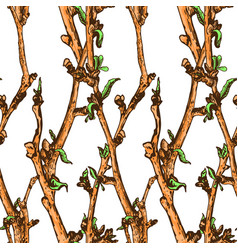 appleflower sketch pattern1-05 vector image vector image