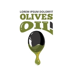 big black olive with oil vector image