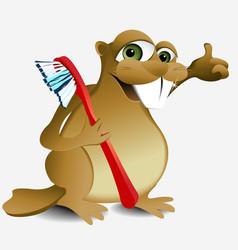 Dental beaver vector image vector image