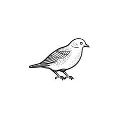 bird hand drawn sketch icon vector image