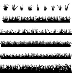 collection of silhouettes of grass vector image