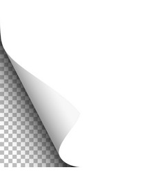 Curled lower left corner white paper vector