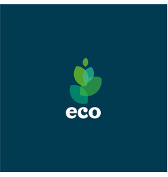ecology organic flat logo vector image