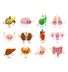 Internal organs human smiling brain bladder vector