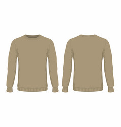 Mens brown sweater vector