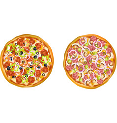 Realistic Isolated Pizza Set vector image