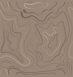 wood-patterns vector image