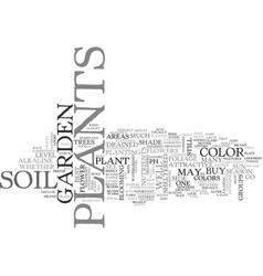 Bestplants text word cloud concept vector