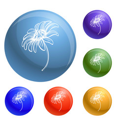 Bio chamomile icons set vector