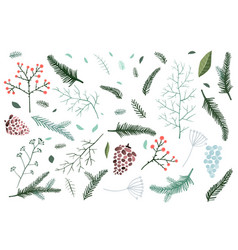 Christmas fir tree and pine branches objects vector