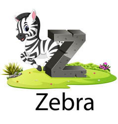 Cute zoo animal alphabet z for zebra vector