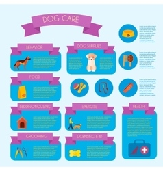 Dog care infographic banner layout vector image