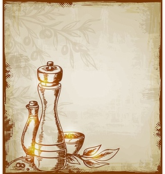 hand drawn background with spices vector image