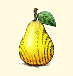 pear with leaf fruit vector image vector image