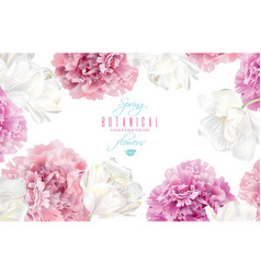 peony tulip banner vector image