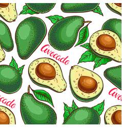 Seamless colorful avocado vector