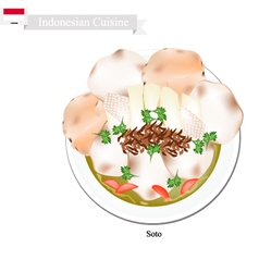 Soto or indonesian chicken and vegetables soup vector