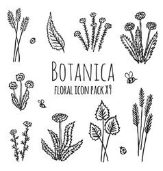 Botanica floral - stylized monochrome icons vector