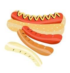 Delicious Hot Dog on A White Background vector image