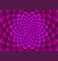 floral spirals vector image