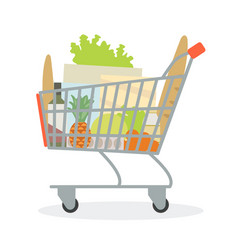 grocery cart from supermarket with products vector image