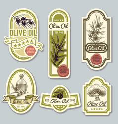Olive oil labels bottle premium packaging with vector