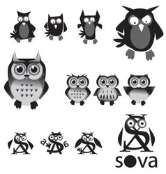 set of owls in black and white colors vector image