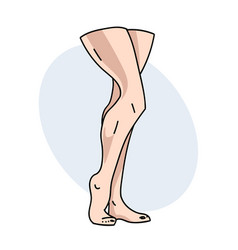 female legs vector image