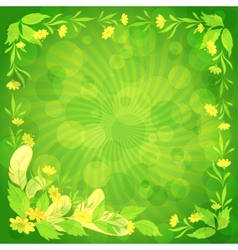 Leaves flowers and feathers on green vector image vector image