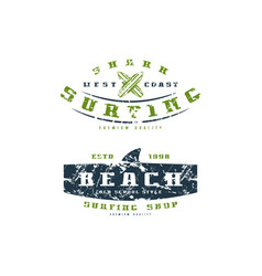 surfing shop emblems graphic design for t-shirt vector image vector image