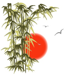 Bamboo on sunset background vector image