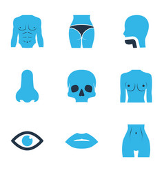 body icons colored set with chest skull eye and vector image