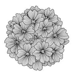 decorative verbena flower vector image vector image
