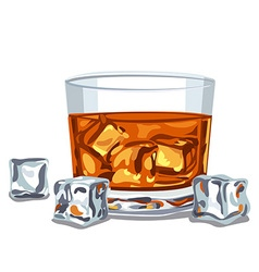 glass of whiskey vector image