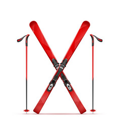 mountain ski and stick vector image