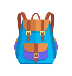 Rucksack unisex in brown and blue colors vector