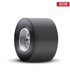 sports car wide wheel vector image