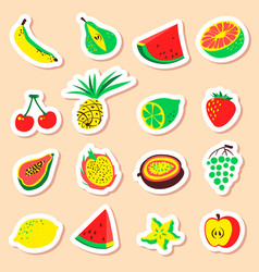 tropical exotic fruits stickers set cute fresh vector image