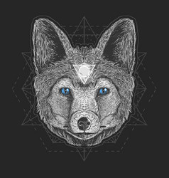wolf head detail vector image