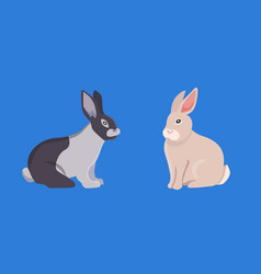 Cartoon rabbits set vector