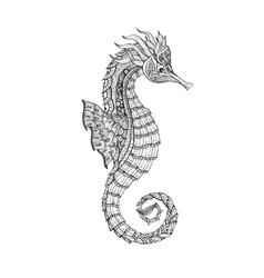 Doodle sketch seahorse black line vector