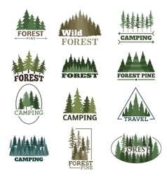 Forest badge set vector
