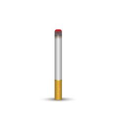 realistic 3d cigarette vector image
