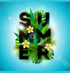 summer holiday typographic vector image