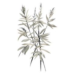 watercolor branches with leaves on white vector image