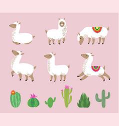 white llama set cute alpaca cartoon wool wild vector image