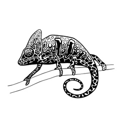 chameleon isolated hand drawn vector image vector image